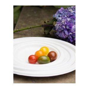 Sugarcane Plates - Green Home Experts